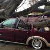 Najgora oluja u Kaliforniji u posljednje tri godine (FOTO)