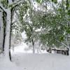 Obilan snijeg u dijelovima Bosne i Hercegovine (FOTO)