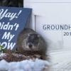 SAD: Prognostičar Phil najavio nastavak zime