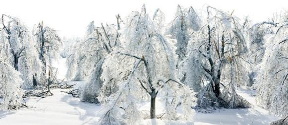 EK daje Hrvatskoj 8 milijuna eura za sanaciju štete od zimskih oluja?