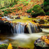 Prirodni biser Slavonije: Listopadske boje Parka prirode Papuk (FOTO)