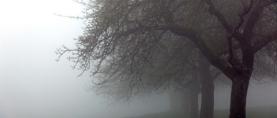KOLUMNA: Andrija u studenom dijeli kabanice
