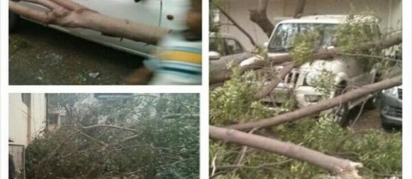New Delhi: 9 ljudi poginulo u pješčanoj oluji