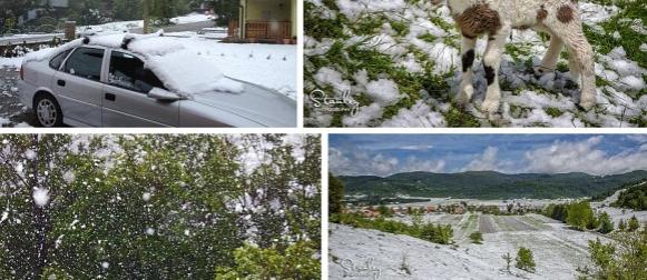 VREMEPLOV: Ciklona Ella prije godinu dana vratila snijeg u dijelove zemlje (FOTO, VIDO)