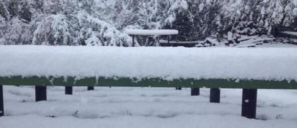 Lipanjski snijeg u SAD-u! (FOTO)
