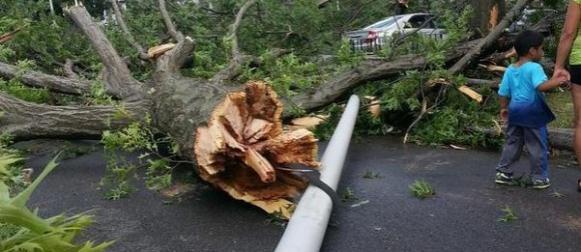 Tornado se obrušio na područje Bostona, oštećenja na kućama (FOTO)