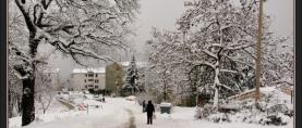 Vremeplov:  Zimska ciklona Lada prije 4 godine