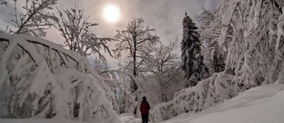 Pogledajte prekrasnu zimsku idilu na Ivanščici pod sjajnom mjesečinom