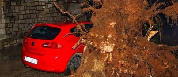 Bura rušila stabla po autima u Zadru, na Krčkom mostu neslužbeni udar od 223km/h (FOTO)
