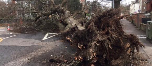 Ciklona  Katie pogodila sjeverozapad Europe