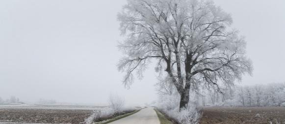 Anticiklonalna zima