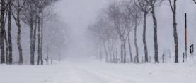 Zima se nastavlja, bit će dosta hladno!