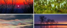 Bliži se proljeće: Slavonija na pragu 20 stupnjeva, u petak stiže fronta