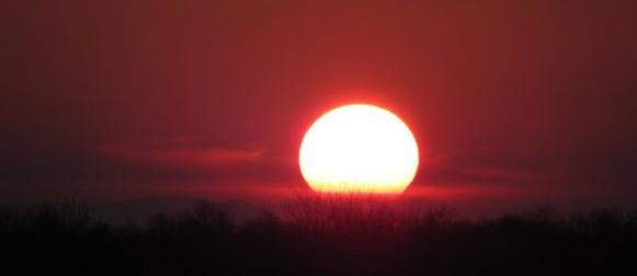 Sredinom tjedna dosta sunca i ranoljetne topline
