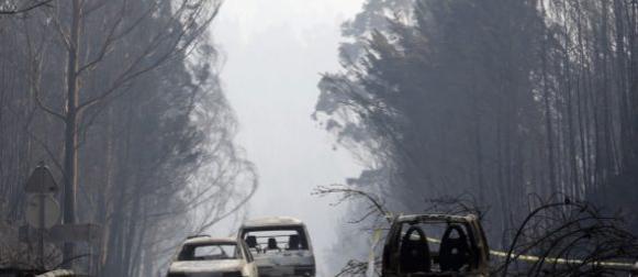 U požaru u Portugalu 62 poginula, a 54 ozlijeđenih