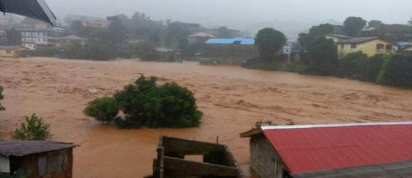 U bujicama u Sijera Leoneu poginulo više od 300 ljudi