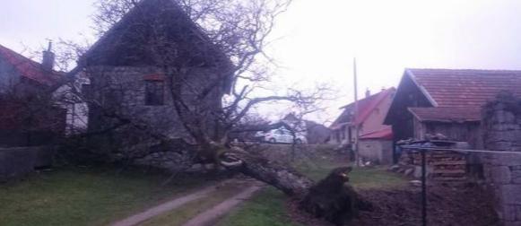 Proglašena elementarna nepogoda za područje Gorskog kotara, olujni vjetar i kiša prouzročili veliku štetu