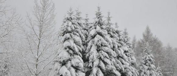 Obilje snijega u gorskim krajevima